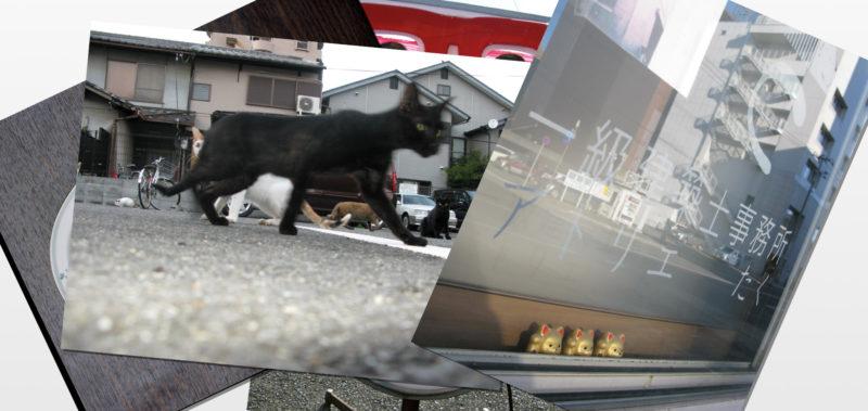 ij_irene-jost_postcards_03